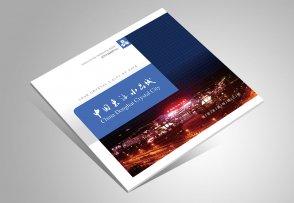 东海水晶城招商手册_水晶城宣传画册