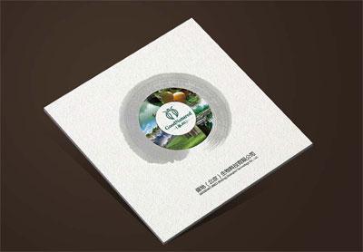 善地生物科技宣传册_酵素饮料产品册